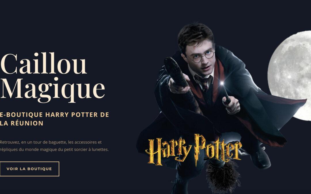 Ouverture de Caillou Magique, premier magasin Harry Potter à La Réunion